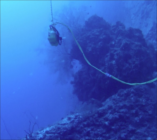 The battery box near a boulder covered in sea fans at a depth of 40 meters (130 feet).