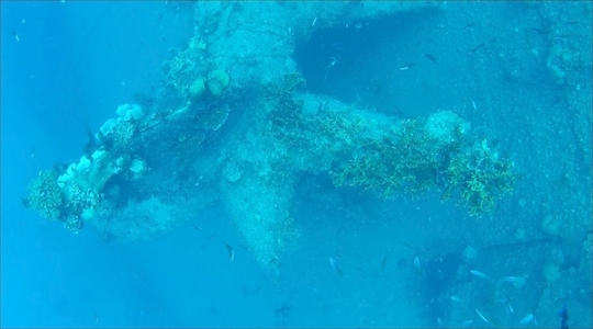 The coral-encrusted starboard propeller of the USS Mississinewa wreck as recorded by the Ulithi ROV's camera. This propeller is 14 feet in diameter.